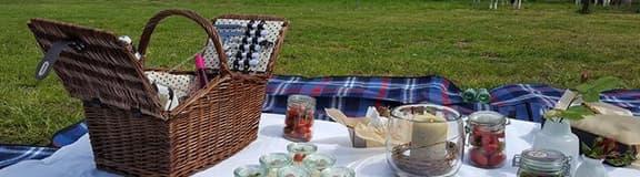 picknick-teaser-startseite